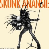 SkunkAnansie_25LIVE25_Albumcover_500